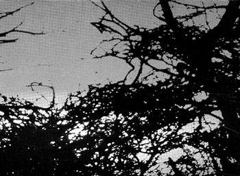 illus_nuit_juste_avant